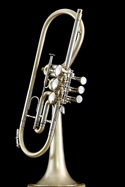 Rotary Trumpets